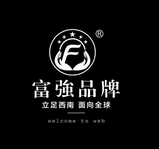 贵州富强包装科技有限公司官网案例